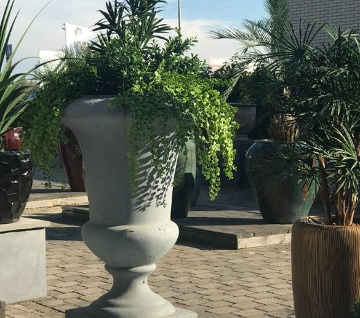 All artificial outdoor plants  with an 8-year colourwarranty by LeopoldFlora