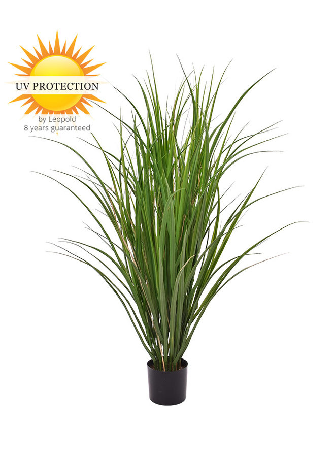 Buiten kunstplant Rietgras 100 cm UV