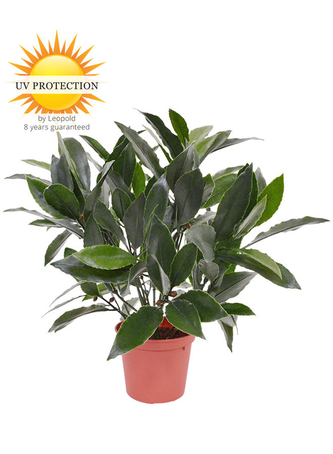 Small outdoor artificial Laurel plant 35 cm  UV-protected in pot