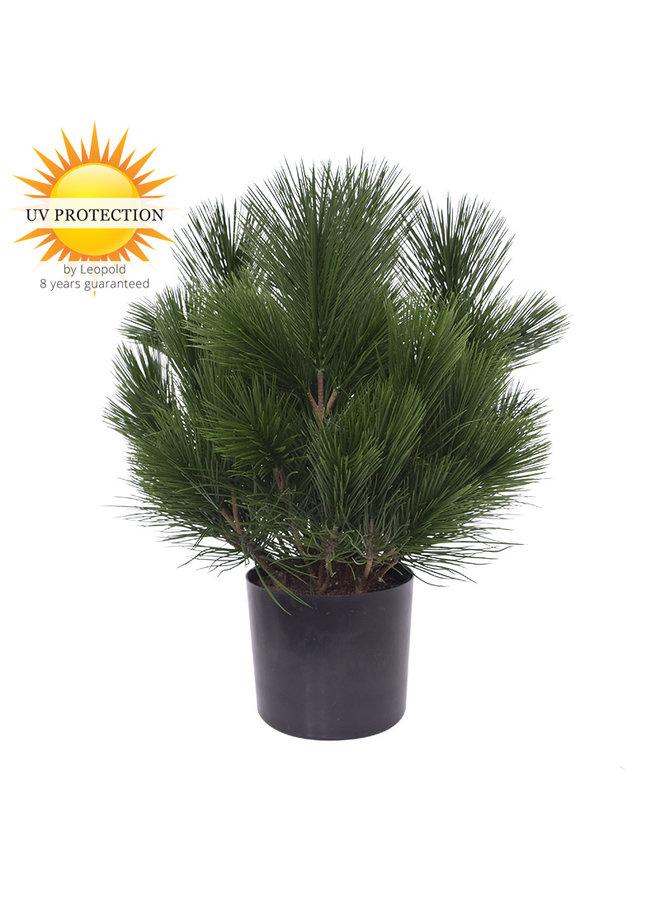 Kunst struik Pinus  45 cm UV voor Buiten