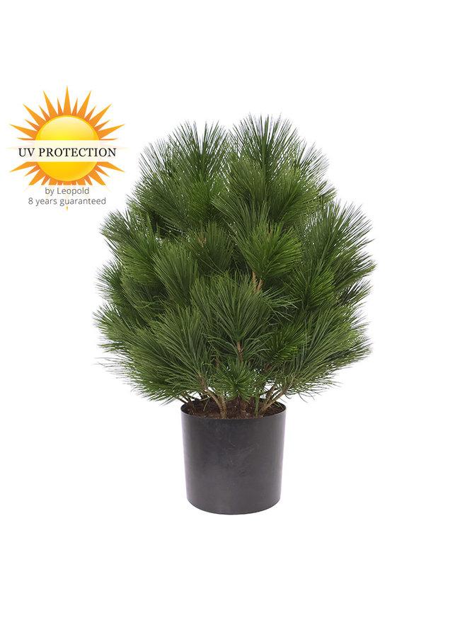Kunststruik Pinus Den 60 cm UV  voor buiten