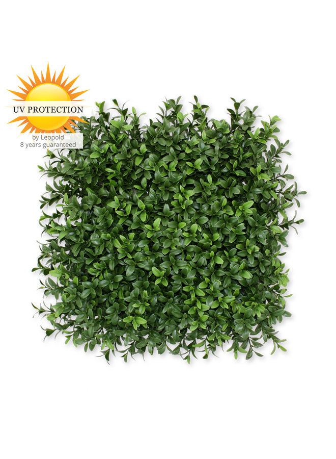 Luxury outdoor Artificial Boxwood mat x300 tips UV protected