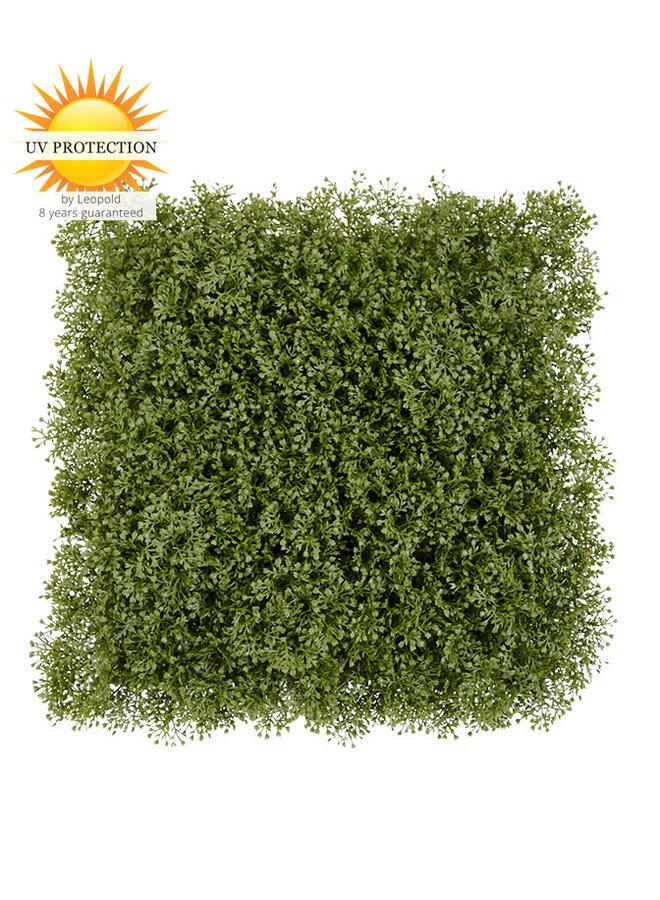 Moss matt Deluxe 25x25 cm UV