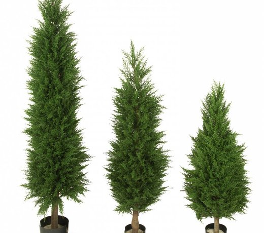 Artifical outdoor Conifers