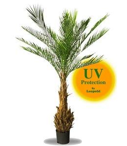 LeopoldFlora UV Kunstpalm Phoenix 170