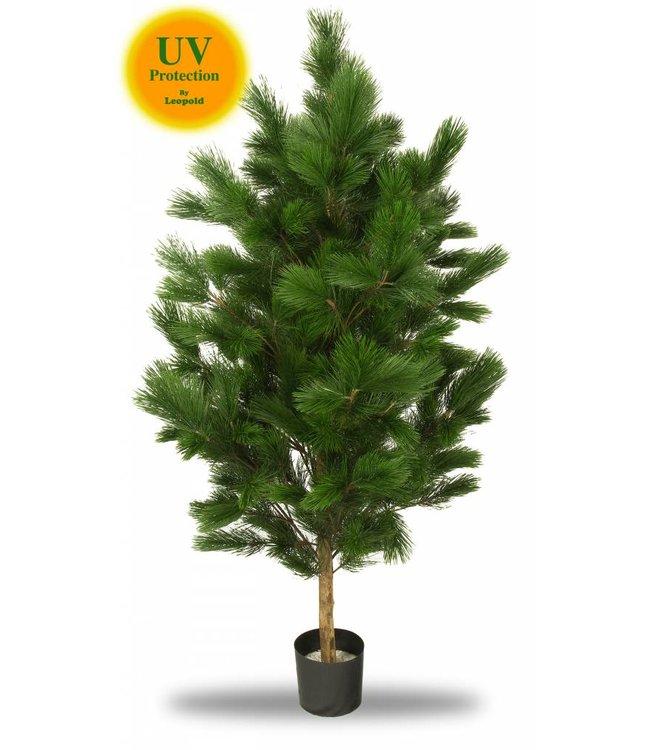 Kunstboom Pinus 160 cm UV