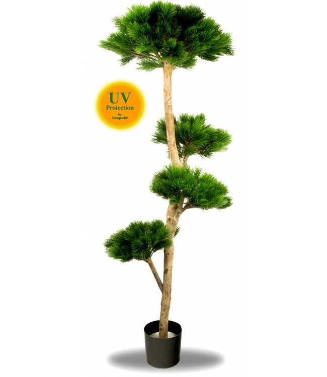 Grote Kunstboom Pinus Bonsai 180 cm UV voor Buiten