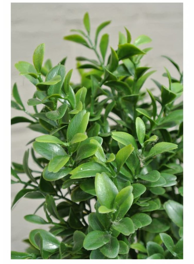 Artificial outdoor Boxwood Pyramid tree 140 cm UV protection