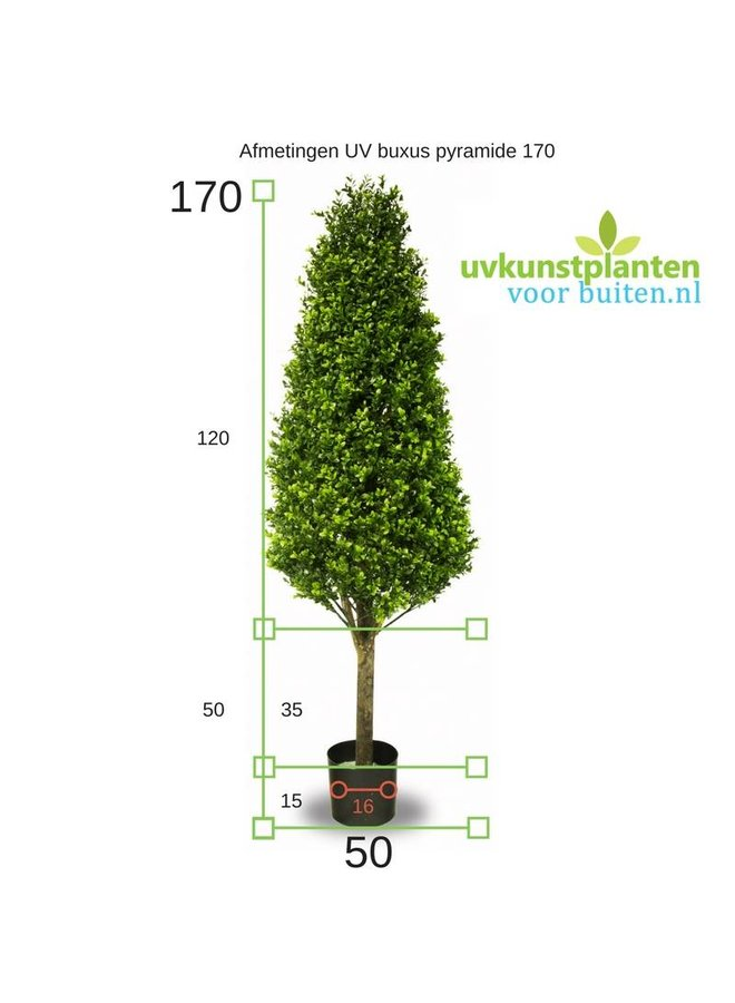 Hoge Kunst Buxus Pyramide 170 cm UV