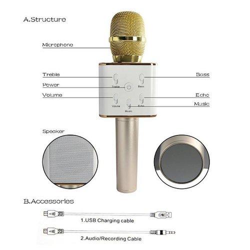 Parya Karaoke Microfoon