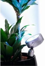 Garden light with 4 LED