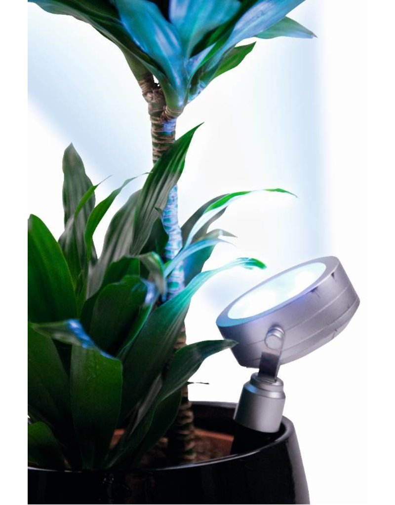 Hollywood plantenlamp