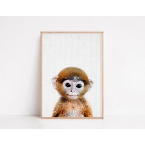 Baby Animal Posters - Set of 6