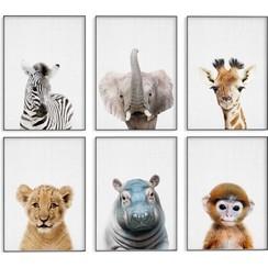 Babydieren posters - Set van 6