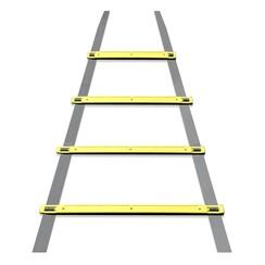 Dunlop - Trainingsladder - 4 Meter Lang - incl. Grondpinnen