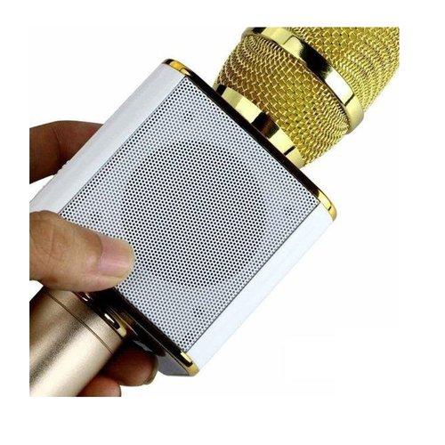 Parya Official - Karaoke Microphone - Gold