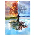 Painting by number - Adults - 4 Seasons - Hobby Package