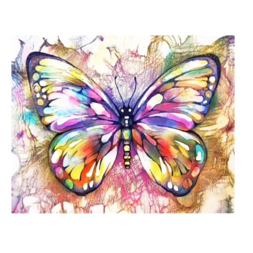 Painting on number - Adults - Butterfly
