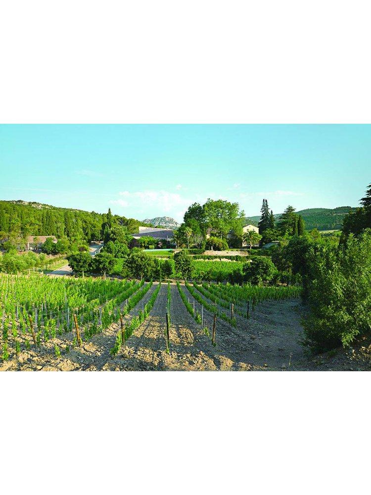 2020 Haut Gléon, Vallée du Paradis Rosé