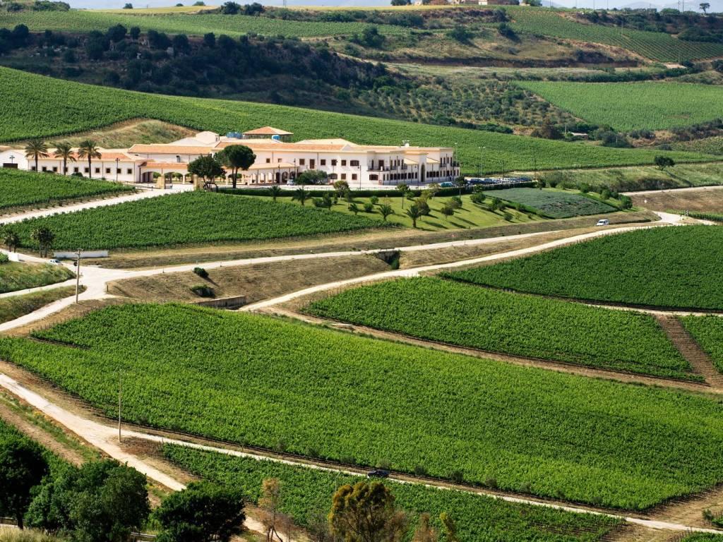 Wesseling Wijnjournaal , augustus 2018, aandacht voor Sicilië