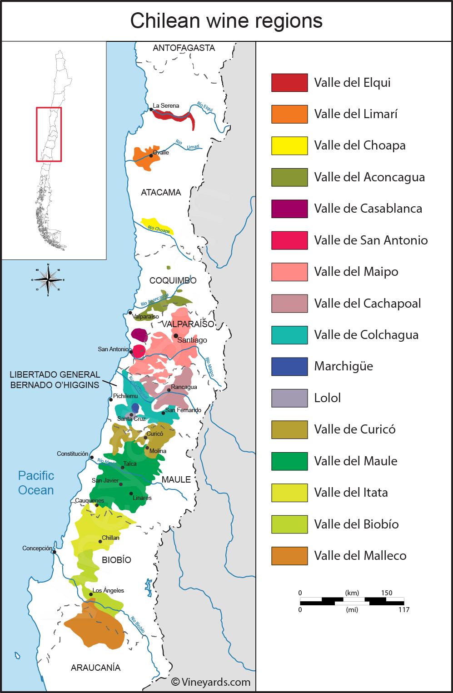 Wijnbouw in Chili