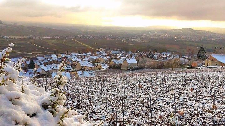Relatiegeschenken & Wijnen december