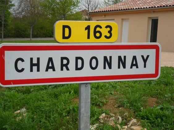 Chardonnay weken (Pasen 2016)