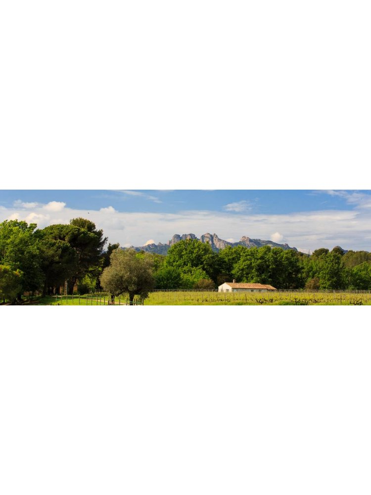 Domaine de Marchandise 2017 Marchandise Rouge Côtes de Provence