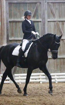 Für Reiter & Pferd