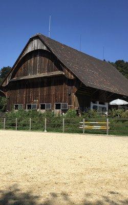 8.-9.05.2021 Klassische Dressur mit Horst Becker im Stall Dietschiberg in Luzern