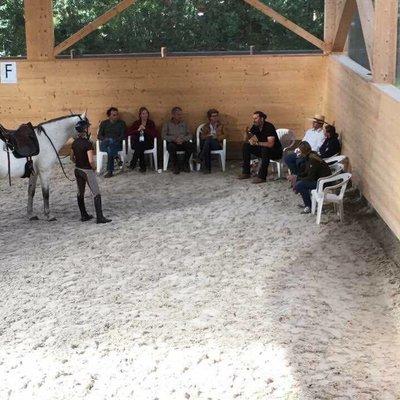 Kurse, Seminare + Messetermine in Europa mit Horst Becker
