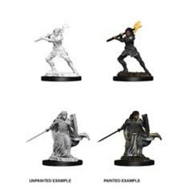 Wiz-Kids D&D Nolzur's Marvelous Minis: Wave 10 - Female Human Paladin