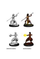 Wiz-Kids D&D Nolzur's Marvelous Minis: Wave 10 - Female Half-Elf Monk