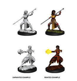 Wiz-Kids D&D Nolzur's Marvelous Minis: Wave 10 - Female Half-Elf Monk
