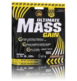 All Stars Ultimate Mass Gain 4000g