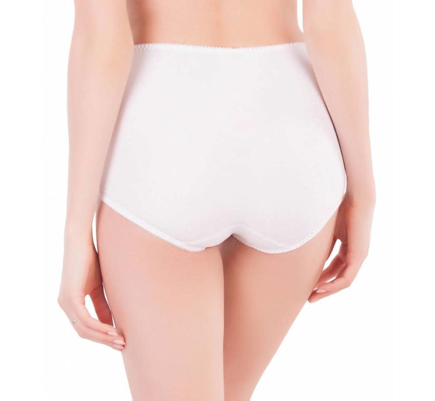 High waist briefs 4375/51