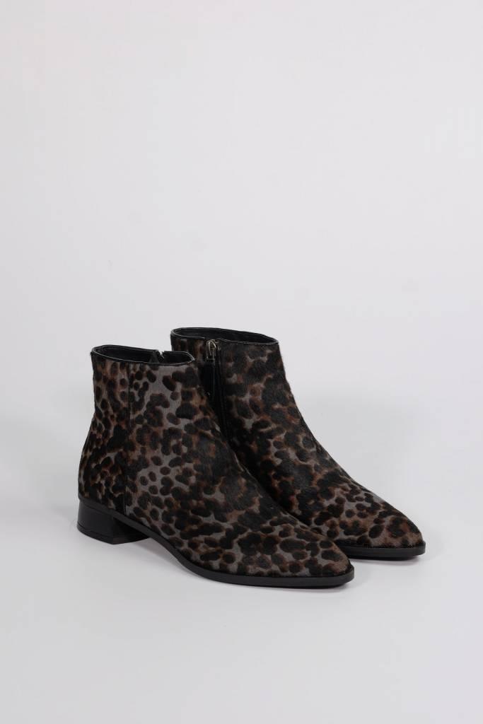 Baki Leopard