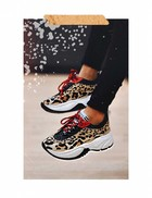 Chinea leopard