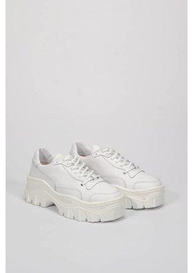 Jaxstar white