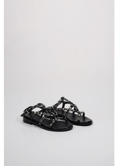 Factory Store Yvia Black Studs