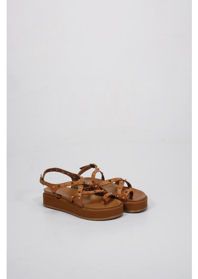 Factory Store Molly Camel