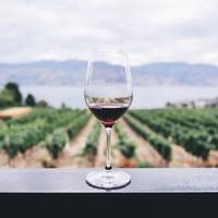 Wijnproeven doe je zo.