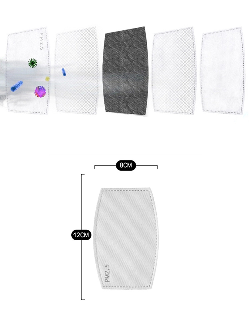 PM2.5 Filter 10 stuks