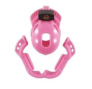 Locked in lust The Vice Mini Roze