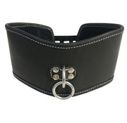 Sportsheets Sportsheets - Edge Soft Leather Posture Collar