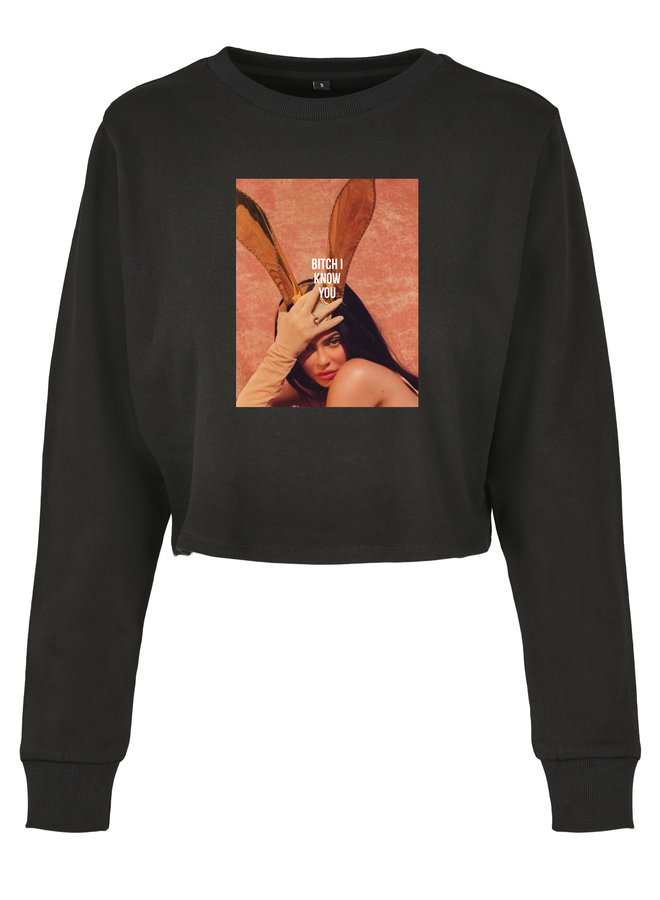 I know you know cropped sweater