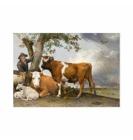 Poster The Bull