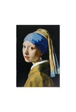 Cahier Mauritshuis divers