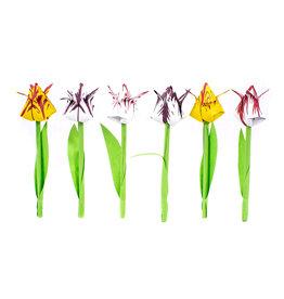 Hollandse Vouw Tulpen