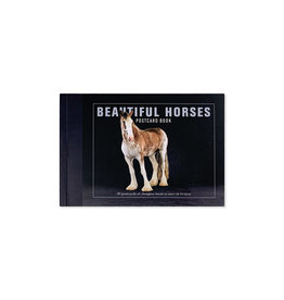 Poscard Book Beautiful Horses
